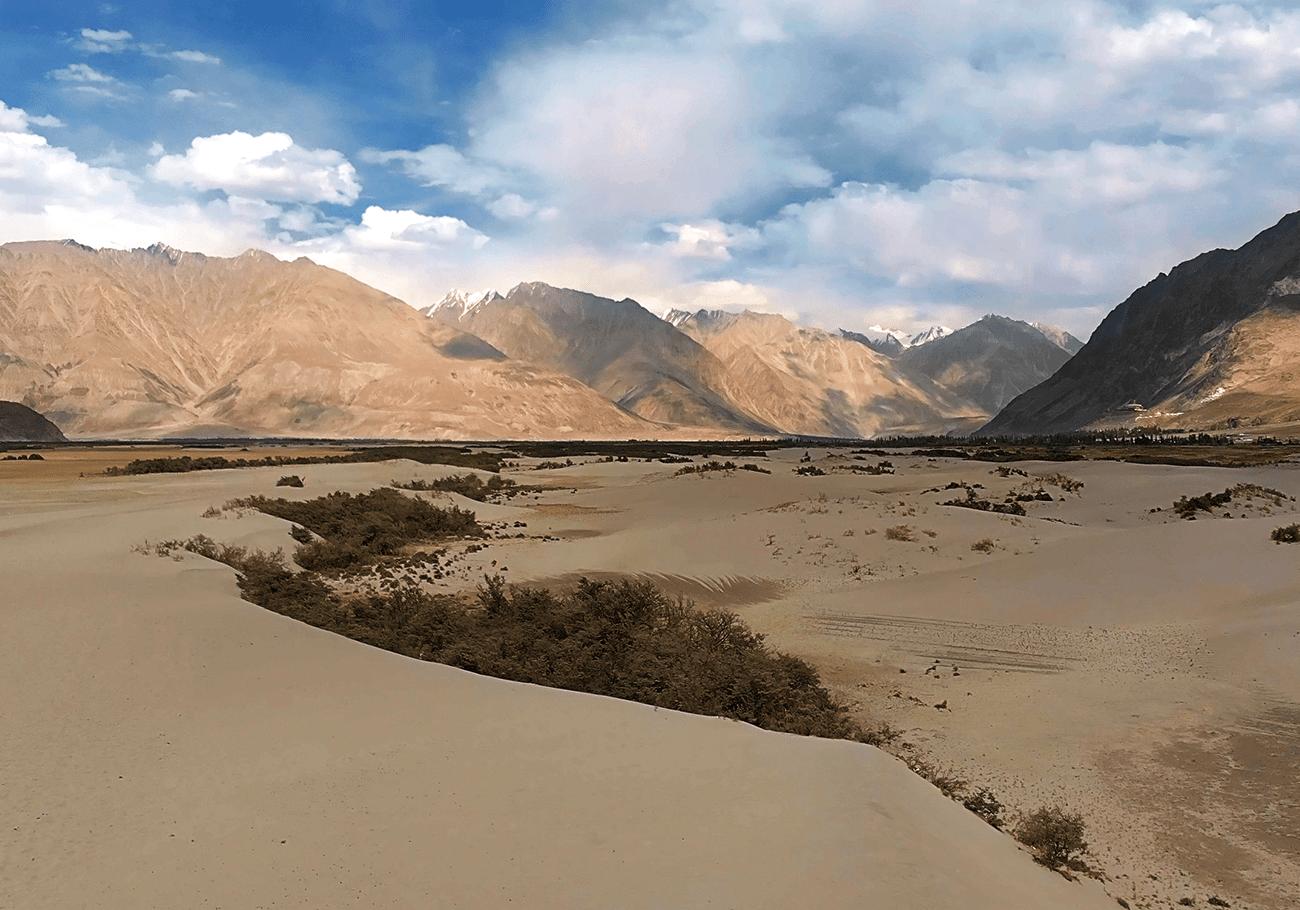 Desert landscape of Nubra valley