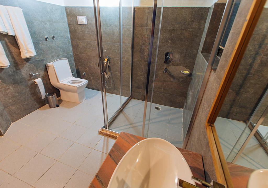 Bathroom Facility within the Mud House